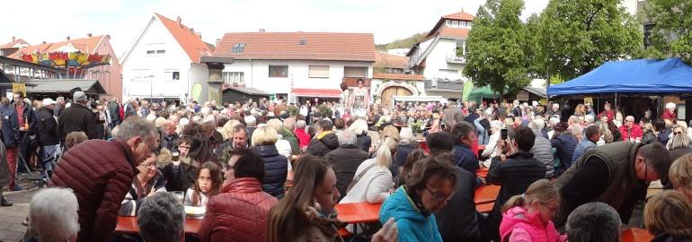 Bild für Brunnenfest übersicht DSC06630